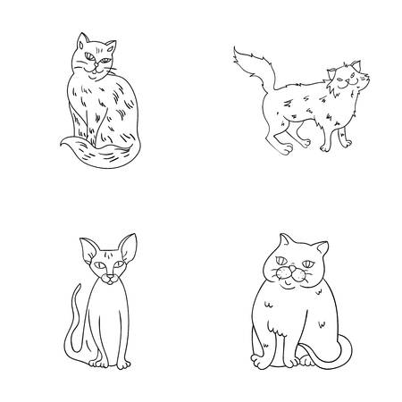 Sphinx, nibelung,norwegian forest cat and other species. Cat breeds set collection icons in outline style vector symbol stock illustration web.