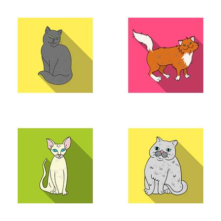 Sphinx, nibelung,norwegian forest cat and other species. Cat breeds set collection icons in flat style vector symbol stock illustration web. Illustration