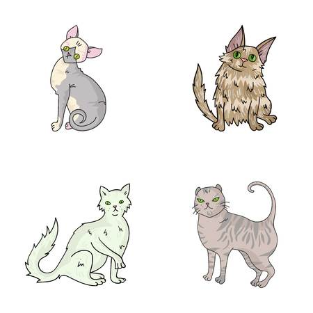 Turkse angora, Britse langharig en andere soorten. Kattenrassen instellen collectie iconen in cartoon stijl vector symbool stock illustratie web. Stock Illustratie
