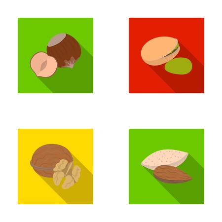 Hazelnut, pistachios, walnut, almonds.Different kinds of nuts set collection icons in flat style vector symbol stock illustration web.