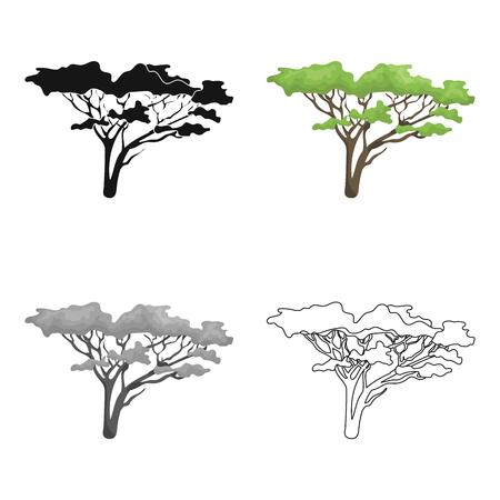 Albero nella savana Singola icona di safari africano nel web dell'illustrazione delle azione di simbolo di vettore di stile del fumetto.