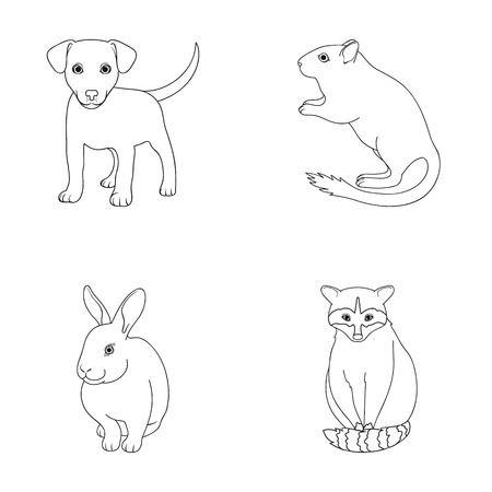 Puppy, rodent, rabbit and other animal species.Animals set collection icons in outline style vector symbol stock illustration web.