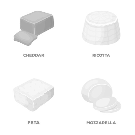 Mozzarella, feta, cheddar, ricotta.Different types of cheese set collection icons in monochrome style vector symbol stock illustration web. Иллюстрация