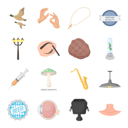 Park, hunting, beaut and other web icon in cartoon style.Neck, body, health icons in set collection. Illustration