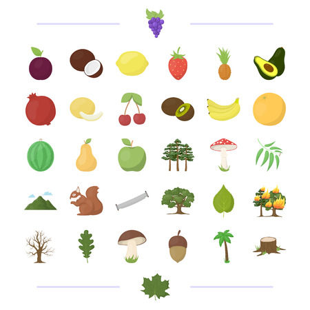 ecology, vitamins, fruit and other  icon in cartoon style.fauna, nature, protection, icons in set collection