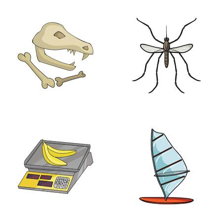 windsurf: history, trade and other web icon in cartoon style.animal, sport icons in set collection. Vectores