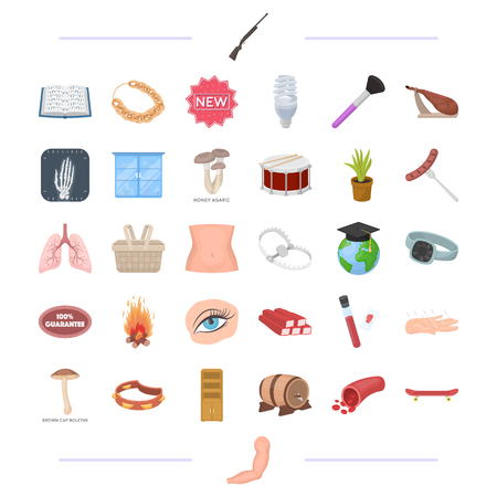 body, medicine, food and other  icon in cartoon style.man, decoration, tool icons in set collection.