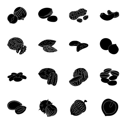 Hazelnut, pistachios, peanuts and other types of nuts.Different types of nuts set collection icons in black style vector symbol stock illustration web.