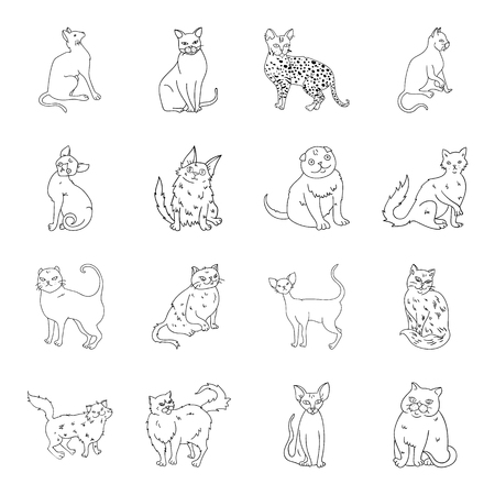 A Cat breeds set icons in line style. Big collection of cat breeds vector symbol stock illustration.