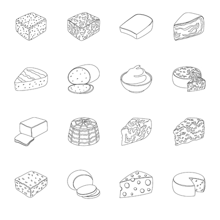 roquefort: Different types of cheese. Different types of cheese set collection icons in line style vector symbol stock illustration. Illustration