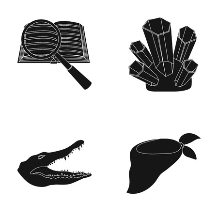 Fashion, training and or web icon in black style.travel, mining icons in set collection. Illustration