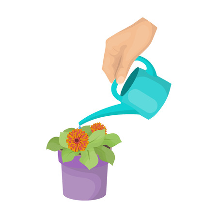 Watering the houseplant in a pot. Home Flower single icon in cartoon style vector symbol stock illustration web.