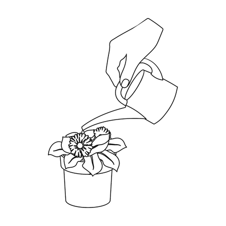 Watering the houseplant in a pot. Home Flower single icon in outline style vector symbol stock illustration web.