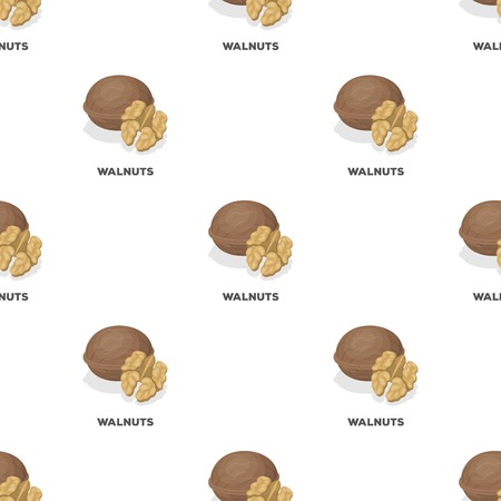 Walnats in the shell.Different kinds of nuts single icon in cartoon style vector symbol stock illustration.