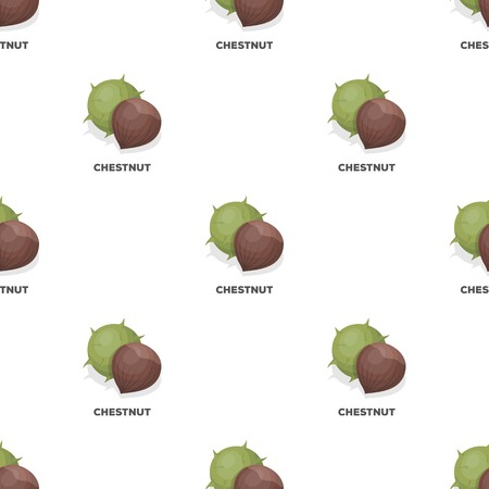 Chestnut.Different kinds of nuts single icon in cartoon style vector symbol stock illustration.