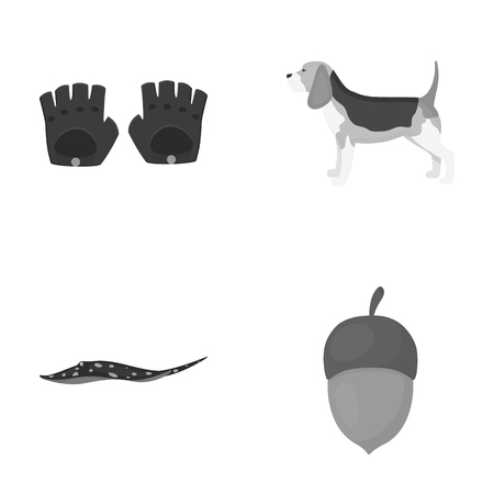 business, leisure, entertainment and other web icon in monochrome style.nut, food, animals, icons in set collection. Illustration