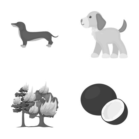 work, business, entertainment and other web icon in monochrome style.milk, trumpet, Desert icons in set collection.