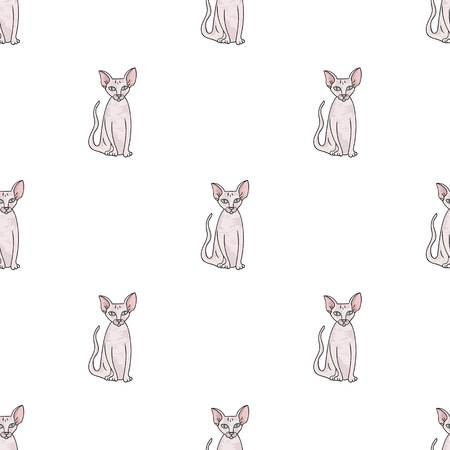 Peterbald icon in cartoon design isolated on white background. Cat breeds symbol stock vector illustration. Ilustração