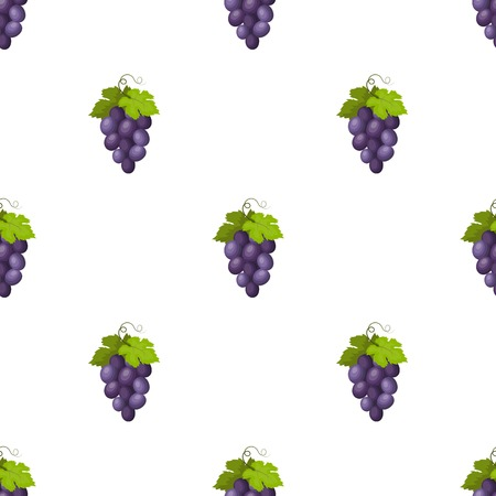 concord grape: Bunch of wine grapes icon in cartoon design isolated on white background. Spain country symbol stock vector illustration.