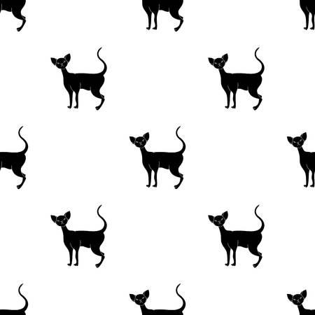 Cornish Rex icon in black style isolated on white background. Cat breeds symbol stock vector illustration. Иллюстрация