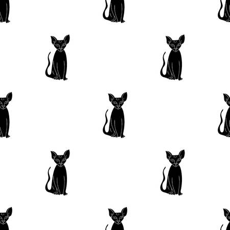 Peterbald icon in black style isolated on white background. Cat breeds symbol stock vector illustration.