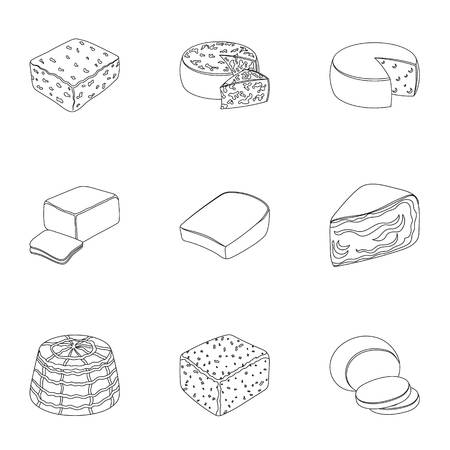 Different types of cheese. Different types of cheese set collection icons in outline style vector symbol stock illustration.
