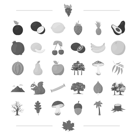 ecology, vitamins, fruit and other web icon in monochrome style.fauna, nature, protection, icons in set collection. Illustration