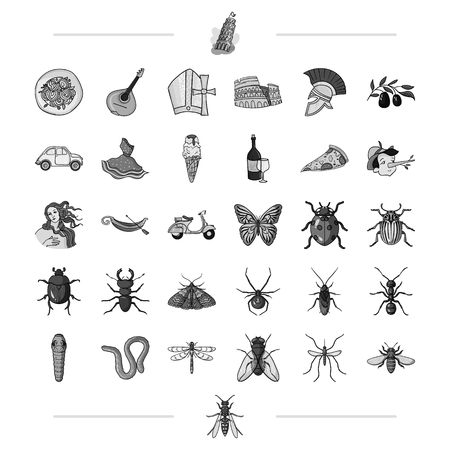 ladybird: Italy, travel, traditions and other web icon in black style.insect, botany, education icons in set collection.