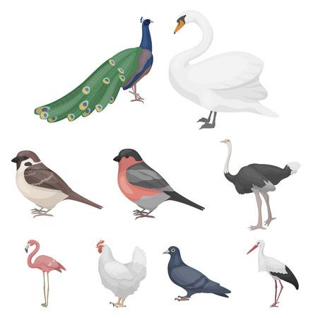 Bird set icons in cartoon style. Big collection of bird vector symbol stock