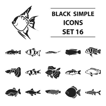 Aquarium fish set icons in black style. Big collection aquarium fish vector symbol stock illustration Illustration