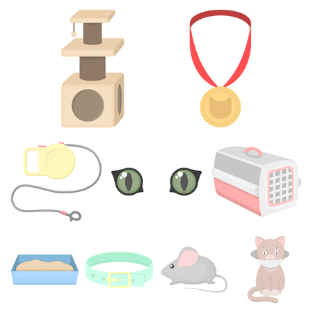 Cat equipment set icons in cartoon style. Big collection of cat equipment vector symbol stock illustration