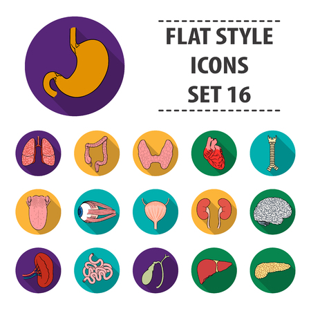 Human organs set icons in flat style. Big collection of human organs vector symbol stock illustration