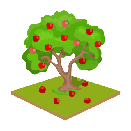 Tree with fruits icon.
