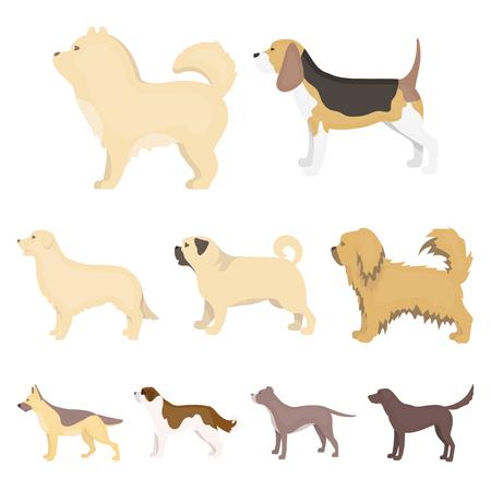 Dog breeds set icons in cartoon style. Illustration