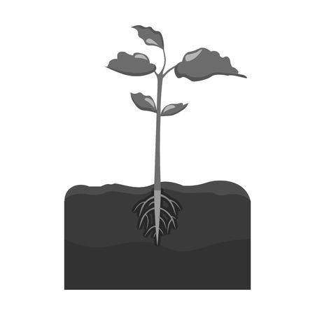 Planten single icon in monochrome stijl. Planten, vector symbool stock illustratie web.