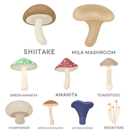 Grzyb zestaw ikon w stylu cartoon. Duża kolekcja symbolu symbolu grzybów wektora Ilustracje wektorowe