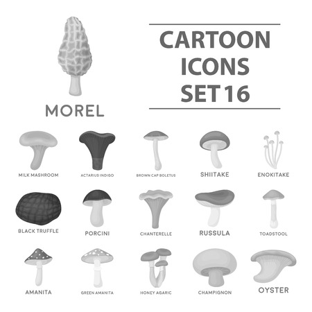 Mushroom set icons in monochrome style. Big collection of mushroom vector symbol stock