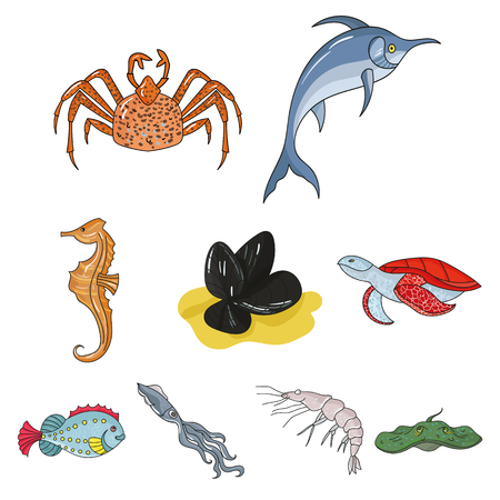 Marine and river inhabitants. Fish, whales, octopuses.Sea animals icon in set collection on cartoon style vector symbol stock illustration.
