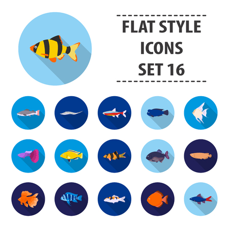 cyphotilapia: Aquarium fish set icons in flat style. Big collection aquarium fish vector symbol stock illustration