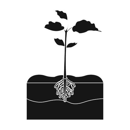 Planten één pictogram in zwarte stijl.