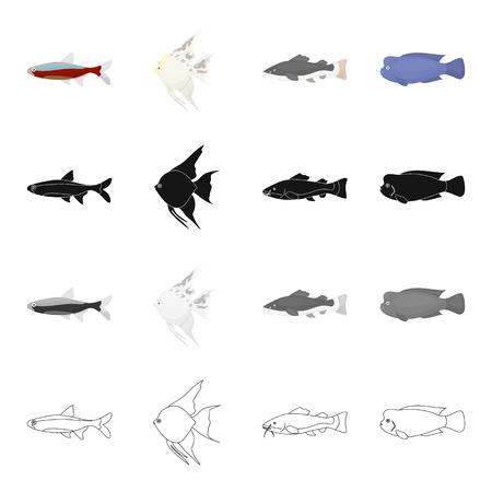 水槽や海産魚、うろこ状の、ネオンの異なる種類。漫画の黒のモノクロのアウトラインスタイルベクトルシンボルストックイラストウェブで魚のセ  イラスト・ベクター素材