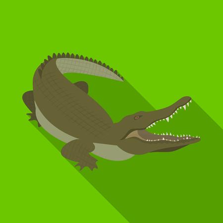 Crocodile, dangerous predator. Reptile, Nile crocodile single icon in flat style vector symbol stock illustration web.