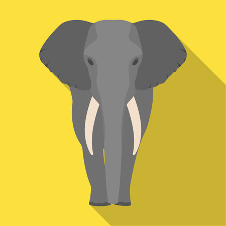 biggest animal: The elephant, the biggest wild animal. African elephant with tusks single icon in flat style vector symbol stock illustration web.