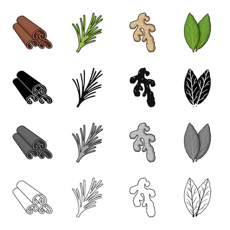 Cinnamon bark, spicy rosemary, ginger root, bay leaf. Spices set collection icons in cartoon black monochrome outline style vector symbol stock illustration . Stock Vector - 85999184