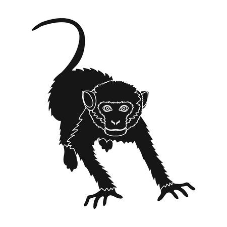 Monkey, wild animal of the jungle. Monkey, mammal primate single icon in black style vector symbol stock illustration web.