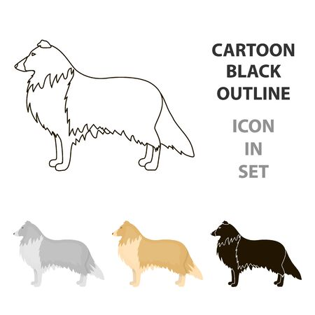 Collie vector icon in cartoon style for web