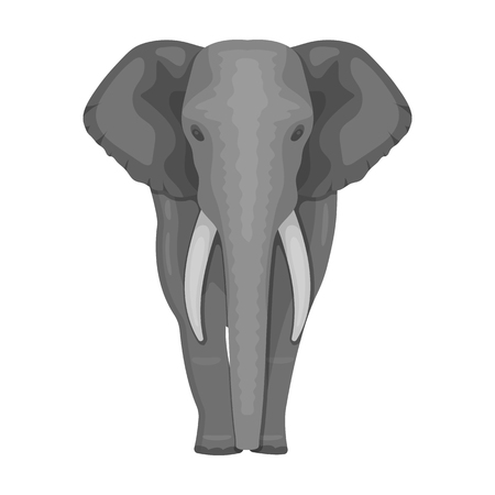 squad: The elephant, the biggest wild animal. African elephant with tusks single icon in monochrome style vector symbol stock illustration . Illustration