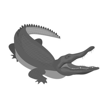 Crocodile, dangerous predator. Reptile, Nile crocodile single icon in monochrome style vector symbol stock illustration web.
