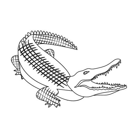 Crocodile, dangerous predator. Reptile, Nile crocodile single icon in outline style vector symbol stock illustration web.