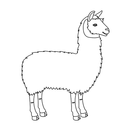 Lama, a South American pack animal. A lame, a cloven-hoofed mammal single icon in outline style vector symbol stock illustration web.